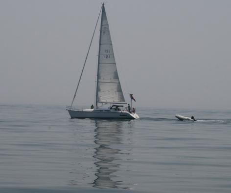 Sailbuzzbay