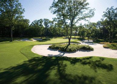 Forest_Dunes_golf33