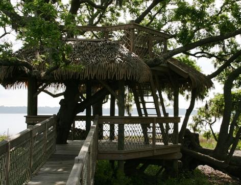 #5 tree house