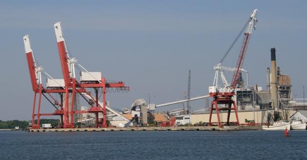 #6 cranes