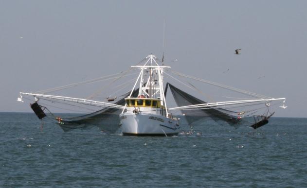 #2 fishing boat
