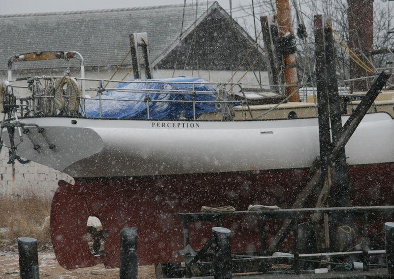 Snowy Harbor14 Perception