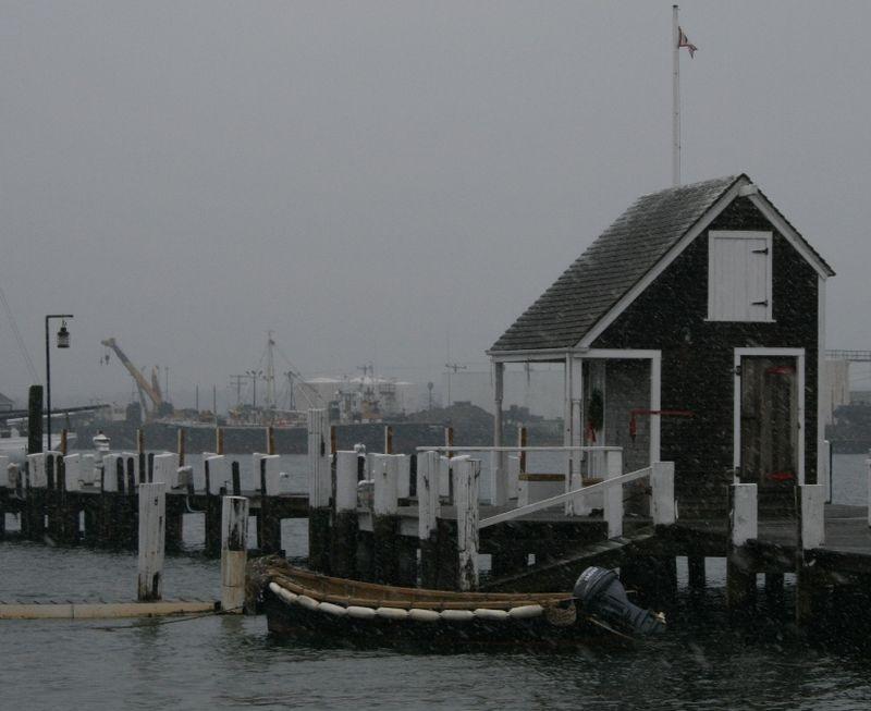 Snowy Harbor16