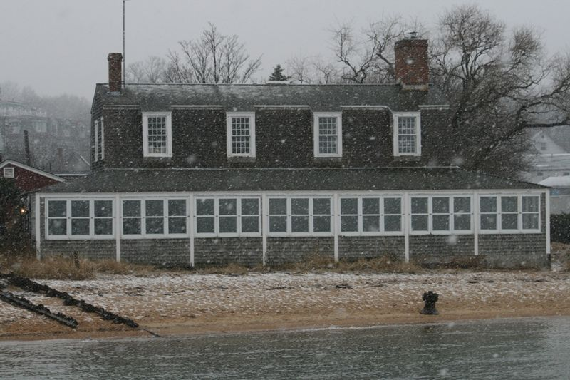 Snowy Harbor12