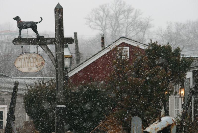 Snowy HarborBD
