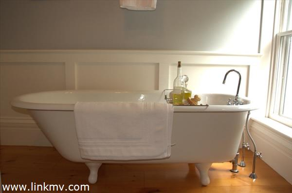 Bathroom's tub