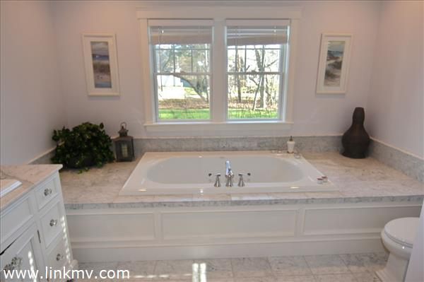 Bathroom 1 tub