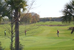 Turner_33_homesite_views_of_golf__2